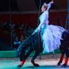 Ты из Бреста? У тебя есть шанс одним из первых увидеть необычный цирковой спектакль!