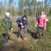 Помощники лесоводов