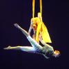 Что снится воздушным гимнастам?
