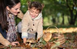 Как правильно собирать грибы: советует Екатерина Жук