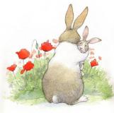 Любопытненько: карликовые кролики