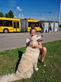 Рассказ Валентины Лайковской, посвящённый верному псу Мишке