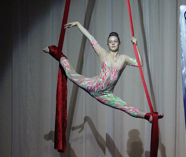 гимнастка на полотная