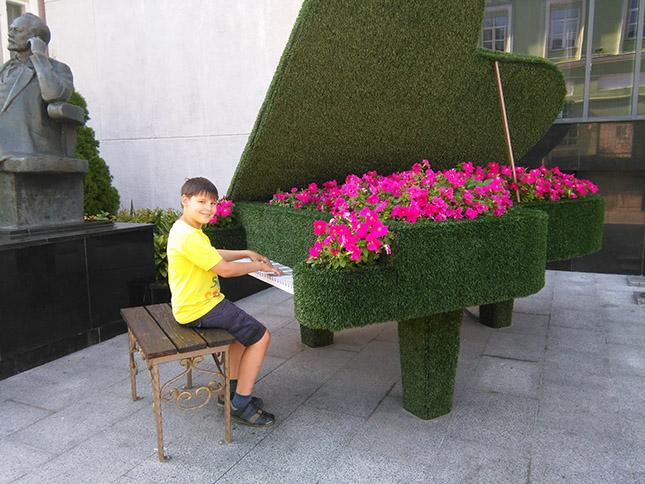 Рояль с петуниями