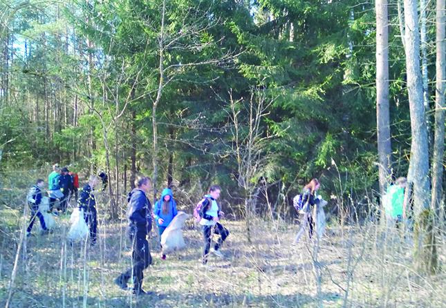 Прибрались в лесу